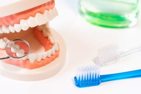 歯周病と歯肉炎と歯槽膿漏の違いとは?