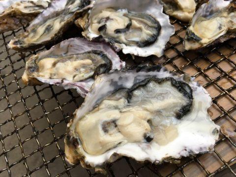 殻付き牡蠣レシピを紹介!剥き方とおいしい食べ方